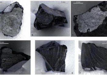Middle Eastern bitumen found in 7th century British ship burial