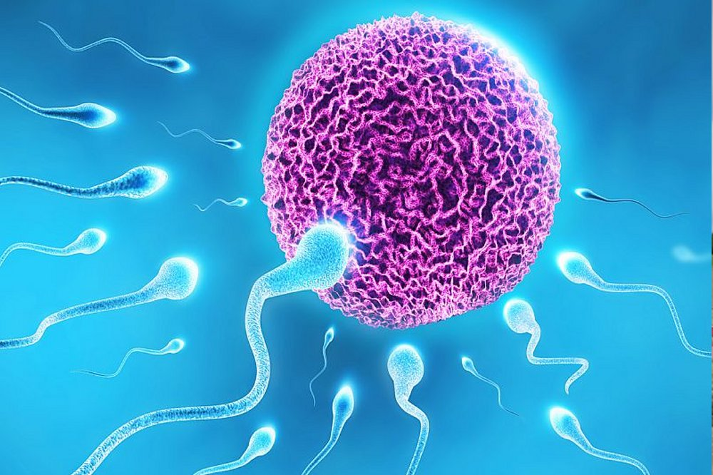 Most men unaware of lifestyle, medical risks to fertility