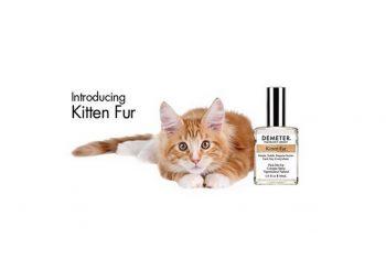 New perfume captures fragrance of kitten fur