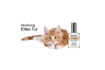New perfume captures fragrance of kitten fur