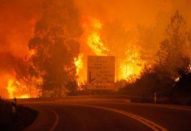 Portugal forest fires kill 57 near Coimbra