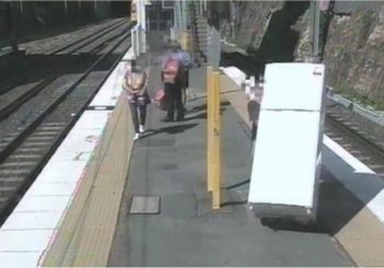 Australian man fined for bringing fridge on commuter train