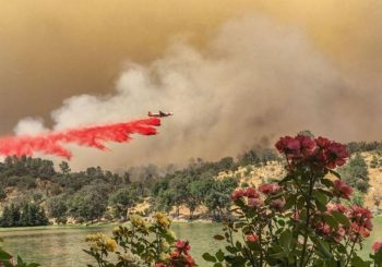 Thousands of firefighters battle California blaze, now at 48K acres
