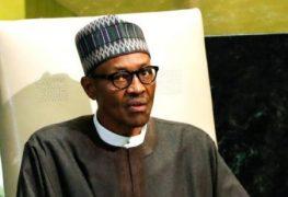 Man who named dog after President Muhammadu Buhari cleared