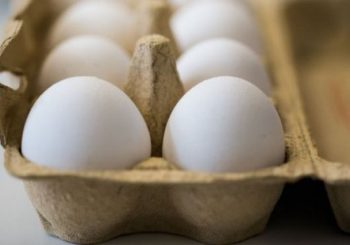 Eggs scandal: 700,000 distributed in UK