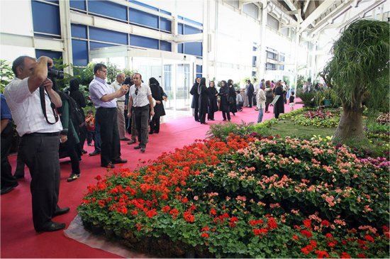 Irans flower industry ready to bloom globally