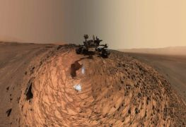 Life On Mars? What to Look for